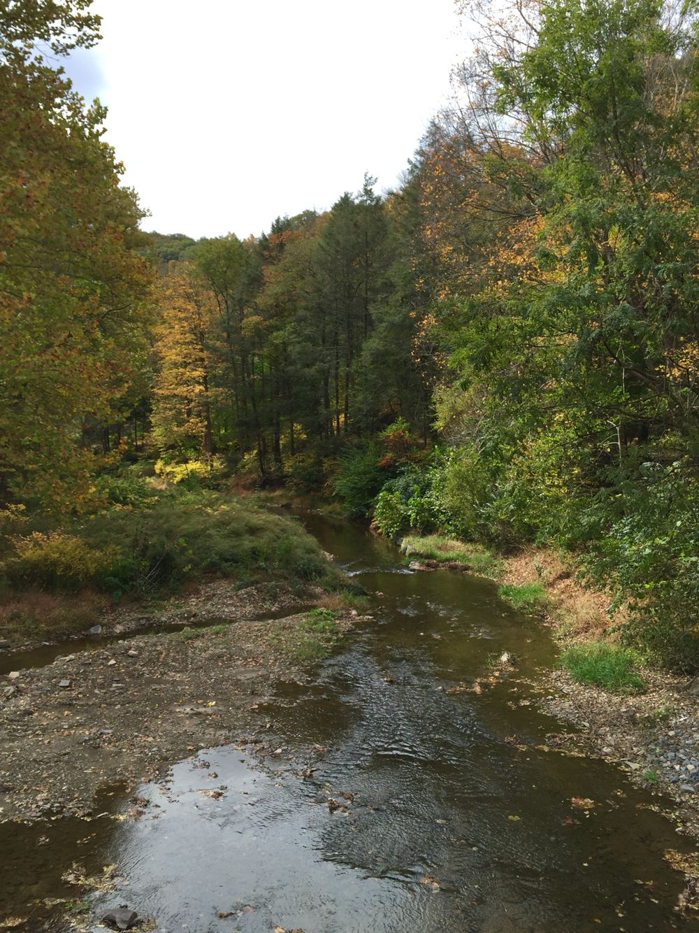 Mahoning Creek, Danville, Pa   Getting out   Pinterest