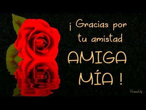 Gracias Por Tu Amistad Amiga Mía Esta Rosa Es Para Ti Youtube