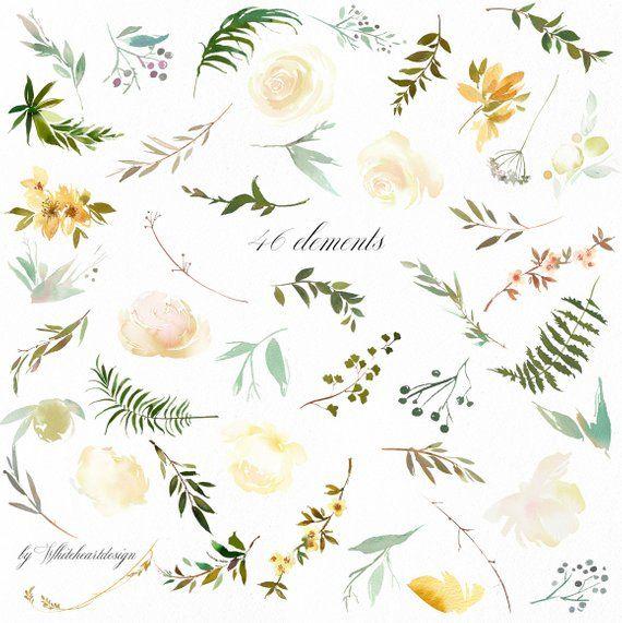 Watercolor flowers green. Vanilla white watercolour leaves