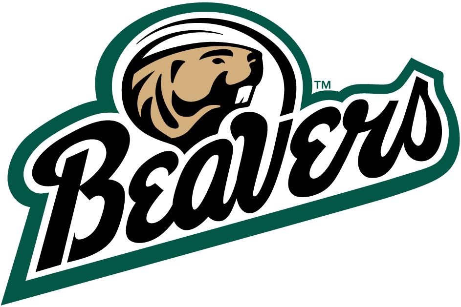 bemidji state beavers ncaa division ii northern sun intercollegiate conference bemidji minnesota bemidji hockey logos fantasy logo bemidji state beavers ncaa division ii