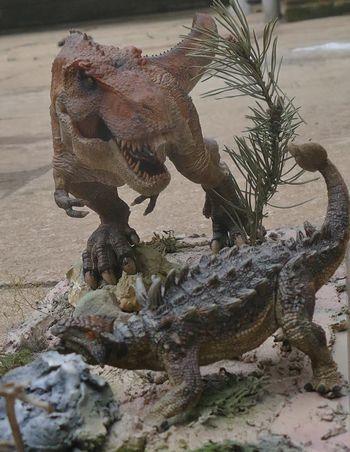 Peter Sent Us In This Wonderful Diorama Featuring A Papo Ankylosaurus Battling Rebor King T Rex