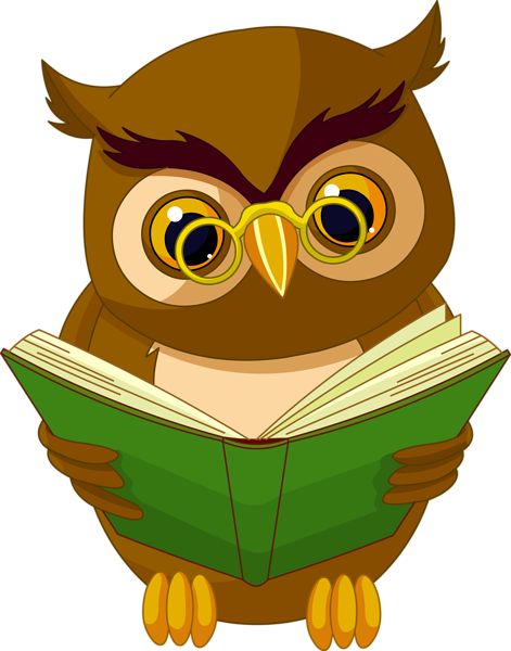 Transparent Owl With Book Png Clipart Picture Owls
