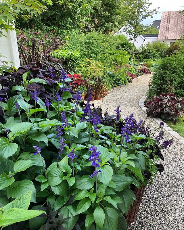 GARDEN DESIGN (@karolinalansmansgarden) • Instagram photos ...