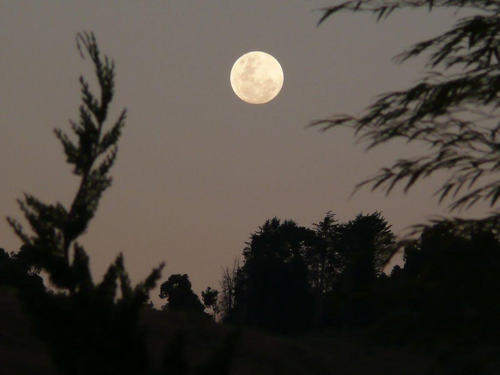 Lua - Campos do Jordão - SP - BR