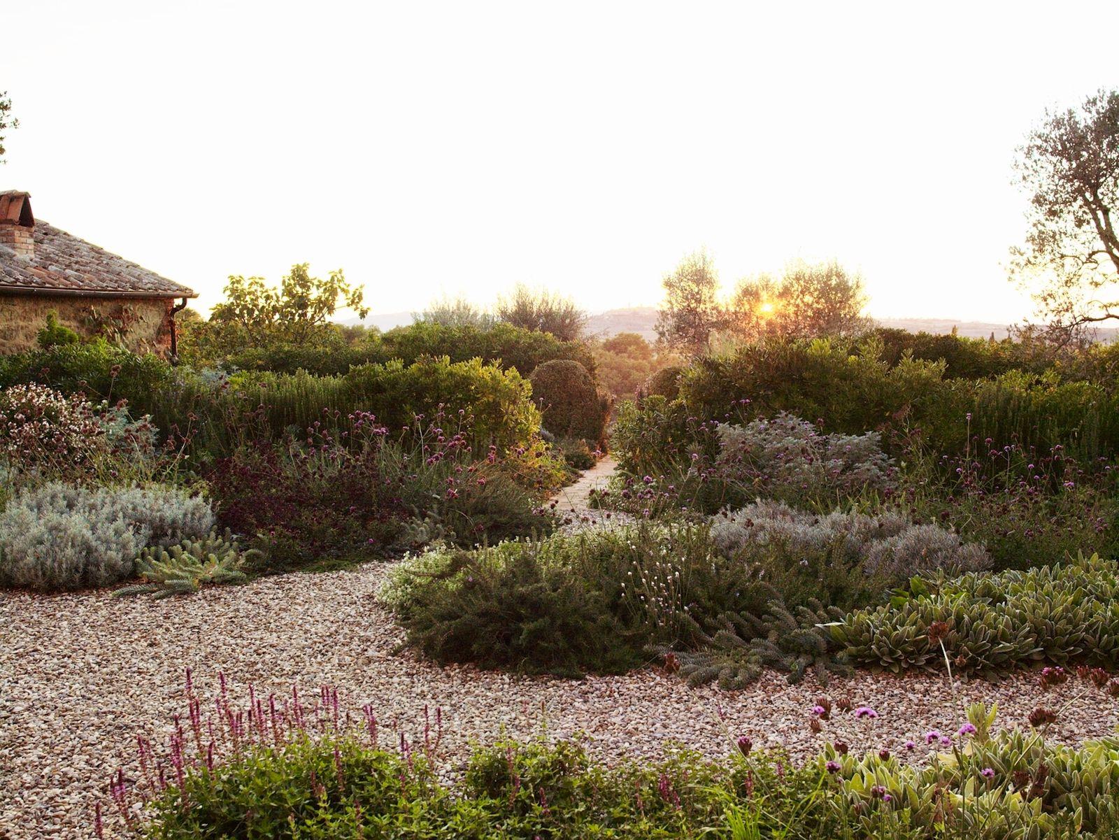 Pin On Mediterranean Gardens
