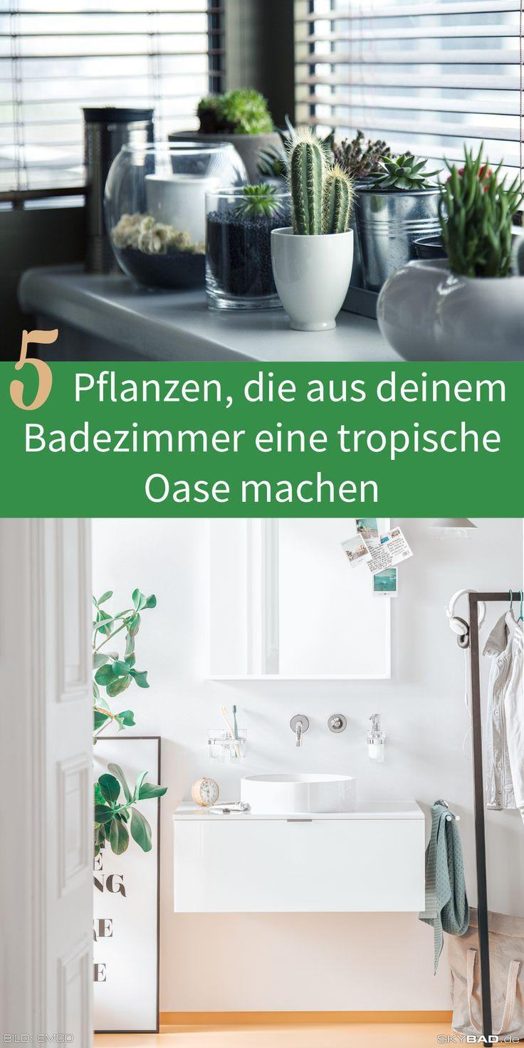 Ideale Pflanzen Furs Badezimmer Badshop Skybad In 2020 Badezimmer Badezimmer Ohne Fenster Badezimmerpflanzen