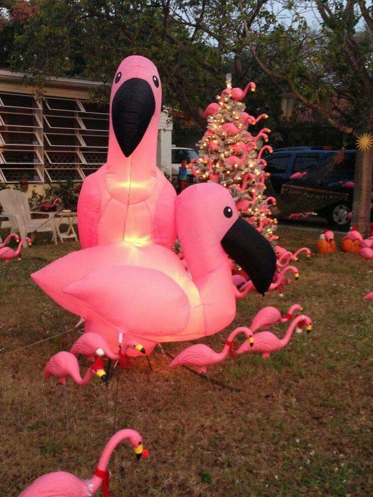 And then THIS could be next Christmas!!! Flamingo