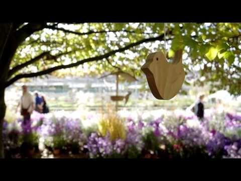 ▶ Vivaio Priola Treviso I colori dell'autunno - 12 e 13 Ottobre 2013 -Lorenzo Franceschinis - YouTube
