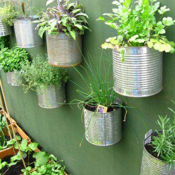 des plantes aromatiques mises en pots dans des bo tes en. Black Bedroom Furniture Sets. Home Design Ideas