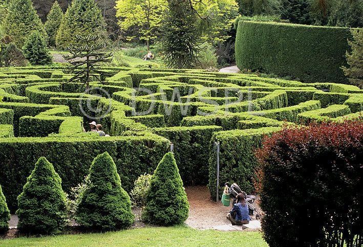 39b603c95c9777ea0ed482a066da1cee - Places To Eat Near Van Dusen Gardens