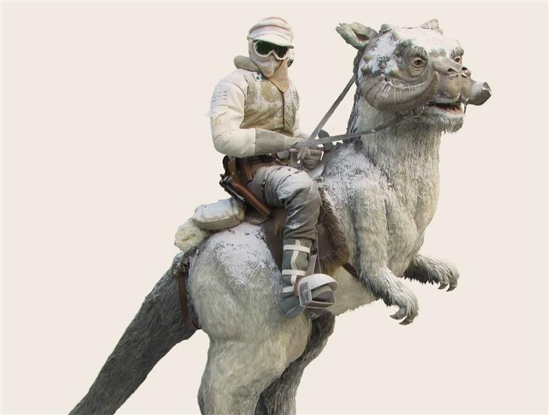 This is a life-size Tauntaun with Luke Skywalker Replica from http://www.RileyReplicas.com! Check out this awesome piece of art!