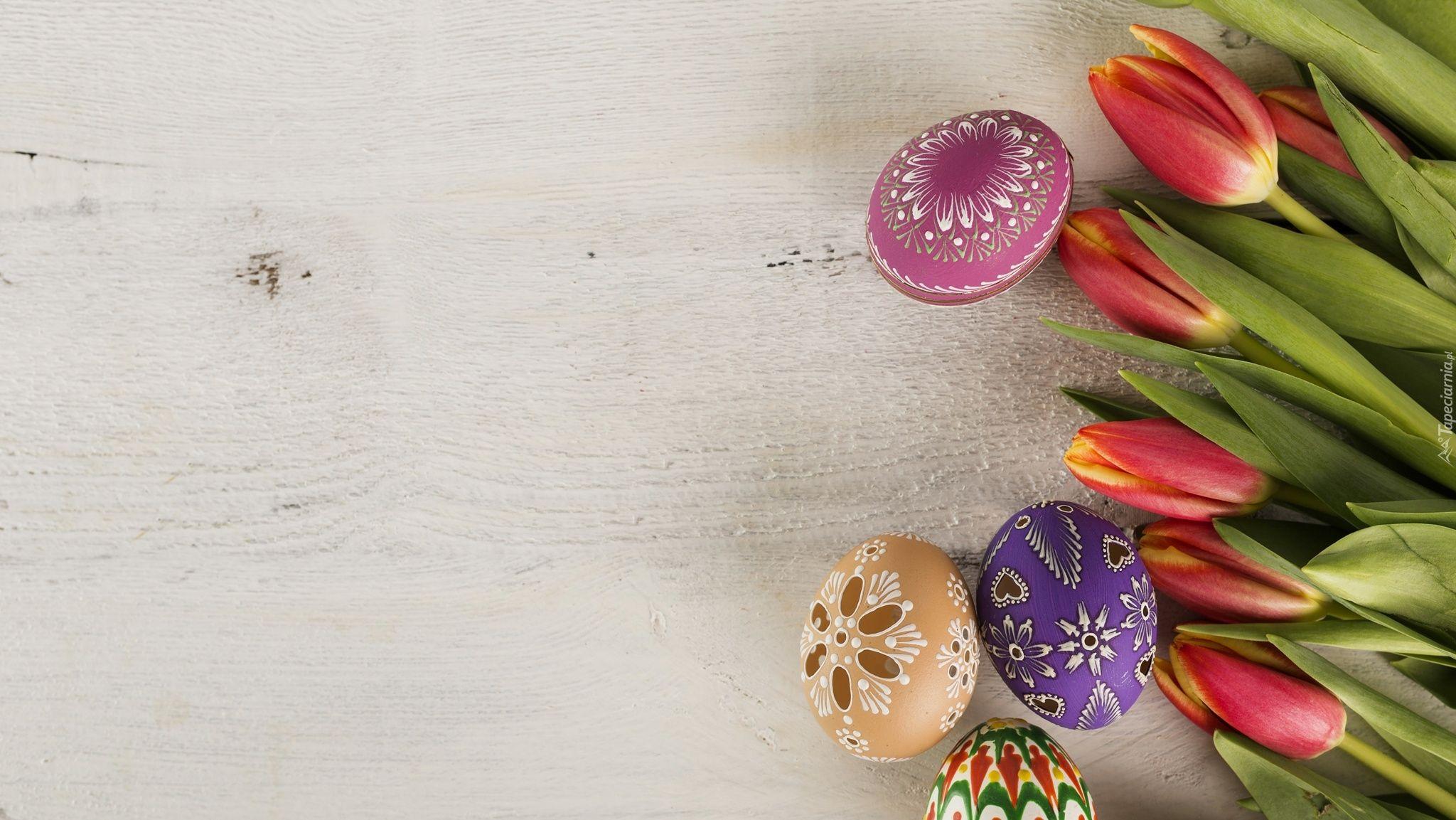 Wielkanoc Kwiaty Tulipany Pisanki Flowers Flower Pictures Free Hd Wallpapers