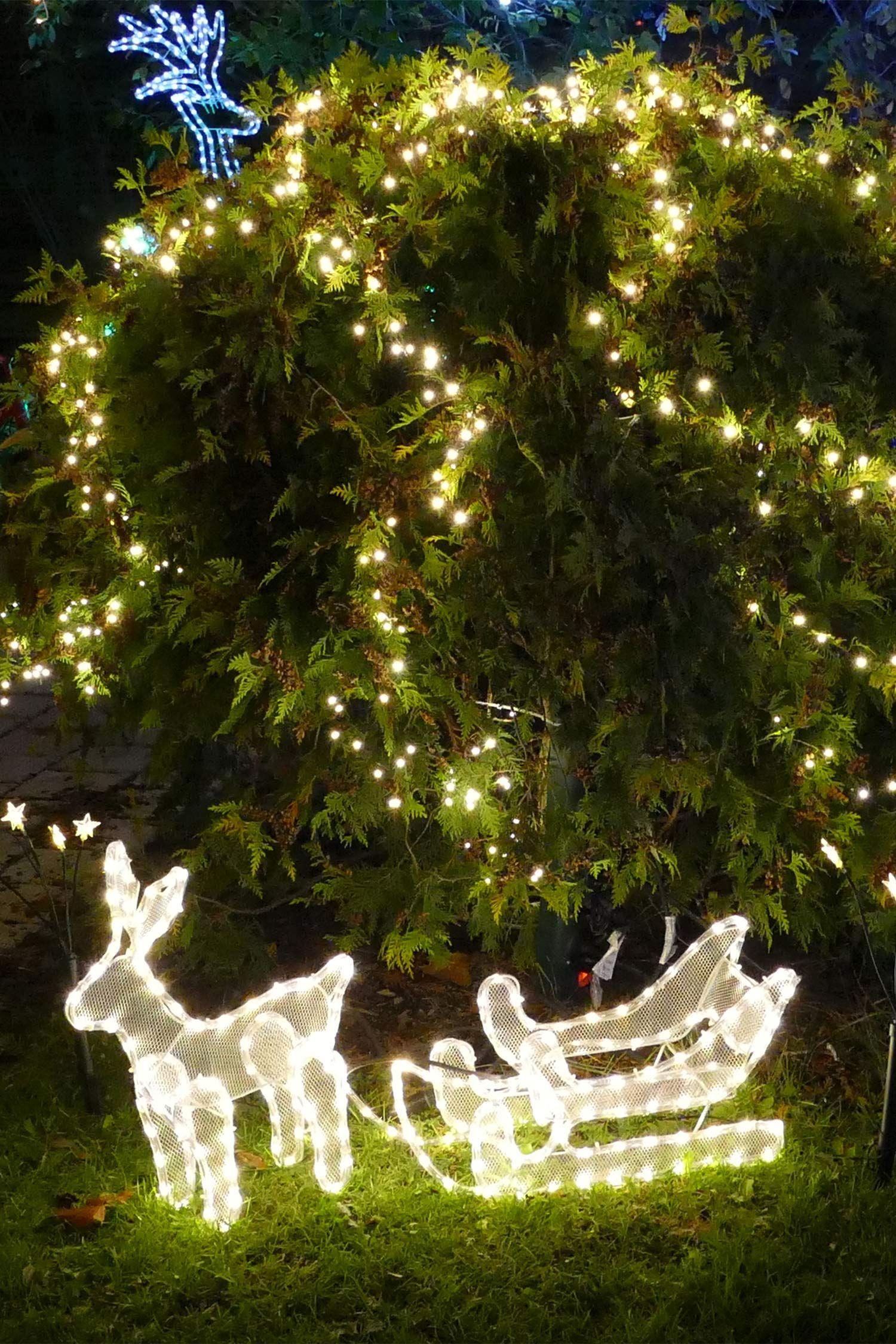 3D - Weihnachtsfigur Rentier mit 216 LED warmweiß