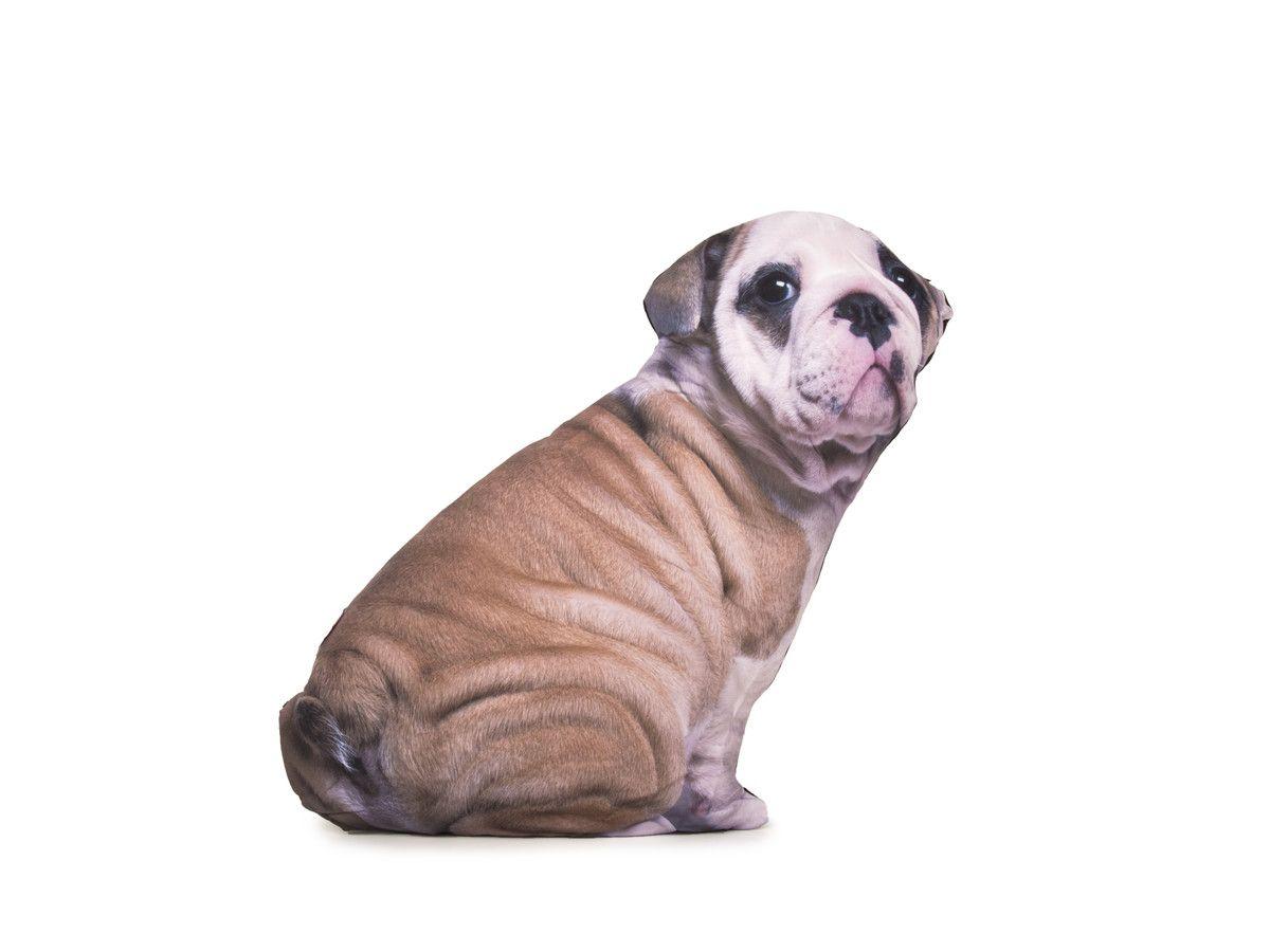 pillow - bulldog