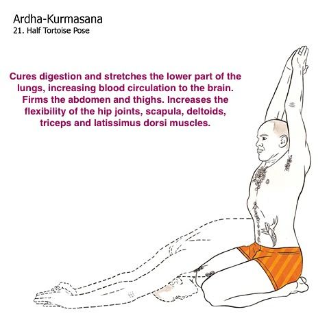 bikram yoga postures illustrated with real bodies