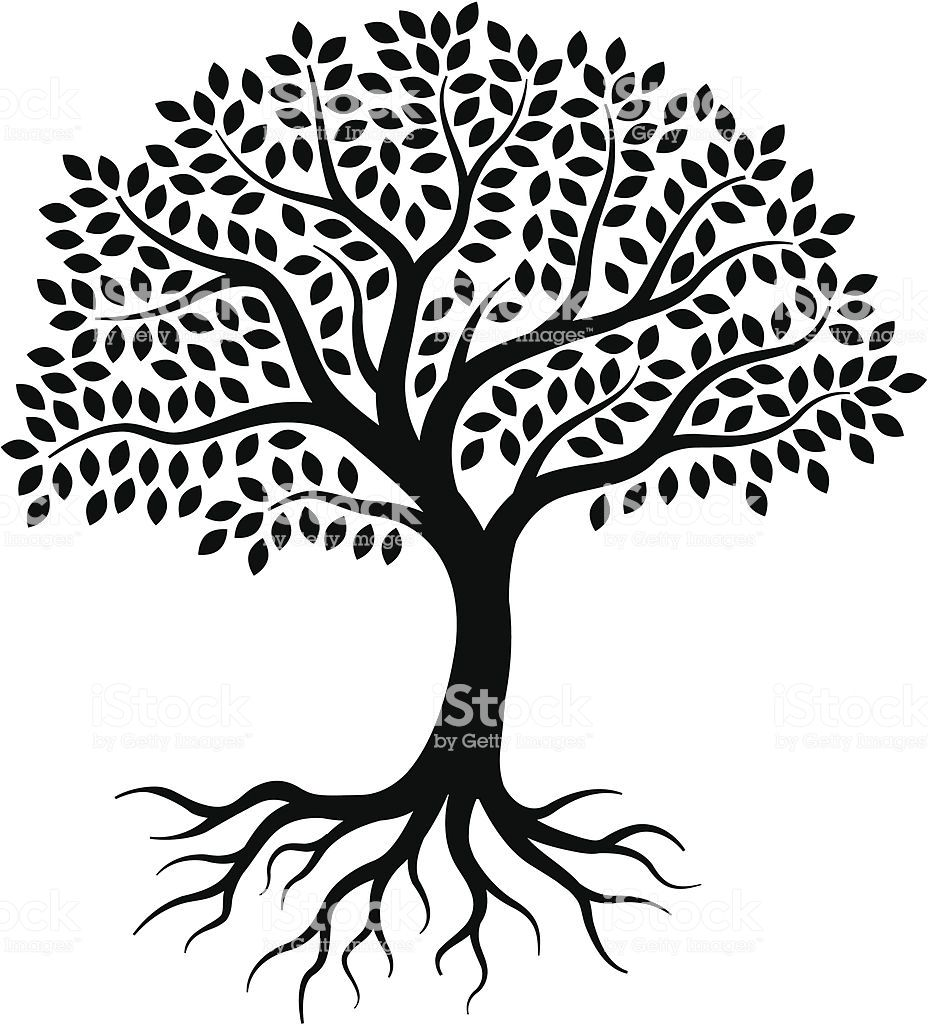 A Simple Graphic Tree Drawn On 3 Layers With Leaves Branches And Tree Drawing Simple Roots Drawing Tree Drawing