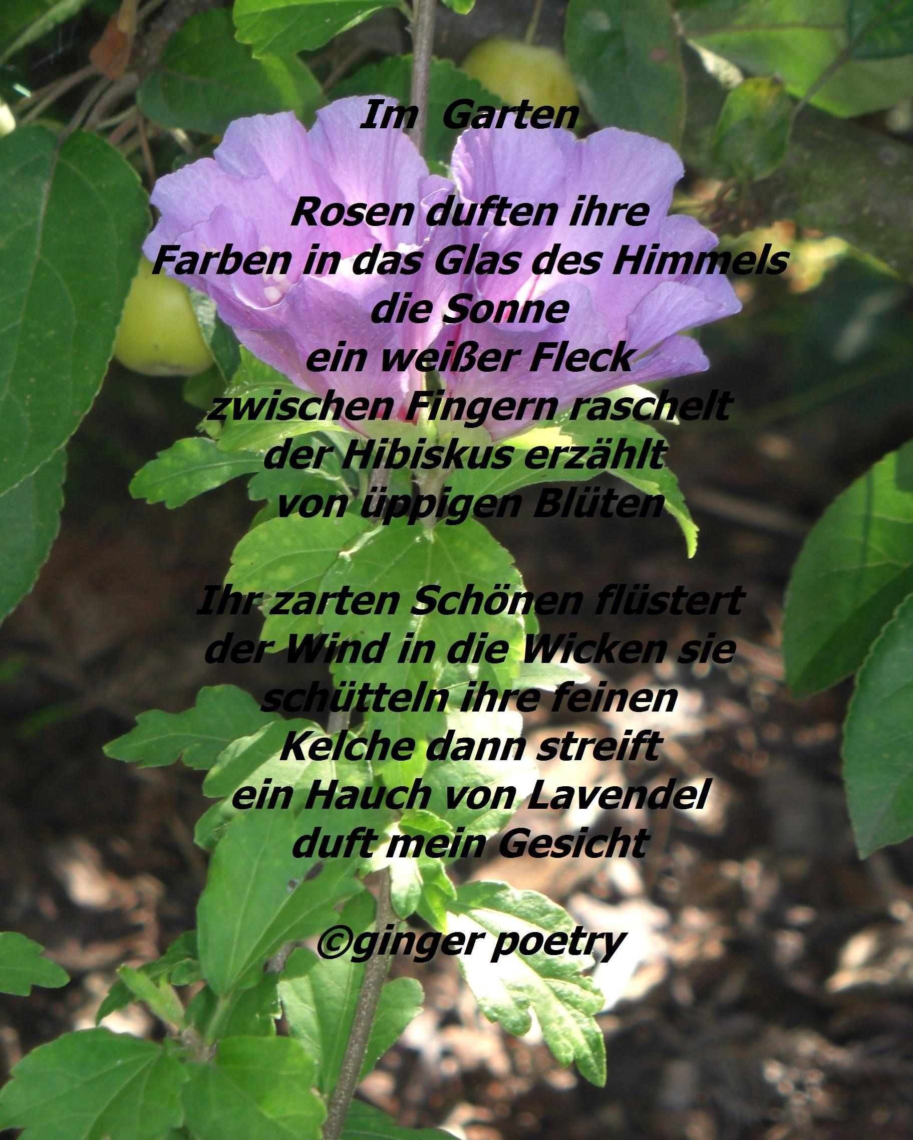 Pin Auf Gedichte Geschichten Und Zitate