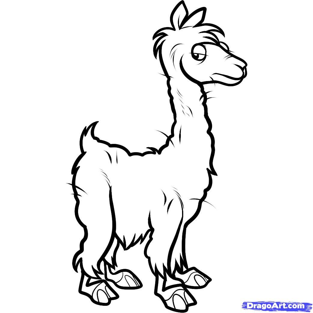 How To Draw An Alpaca Alpaca by Dawn Drawings Online