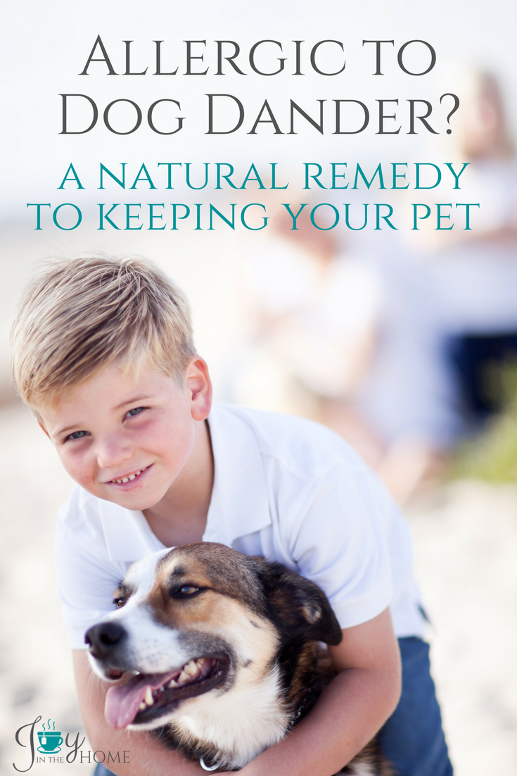 Allergic To Dog Dander A Natural Remedy To Keeping Your Pet Allergic To Dogs Dog Allergies Remedies Dog Remedies