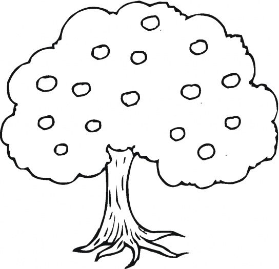 Apple Tree Coloring Page Picture Super