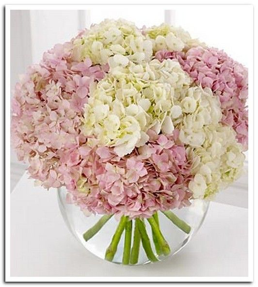 Pink hydrangea flower arrangements wedding decorations