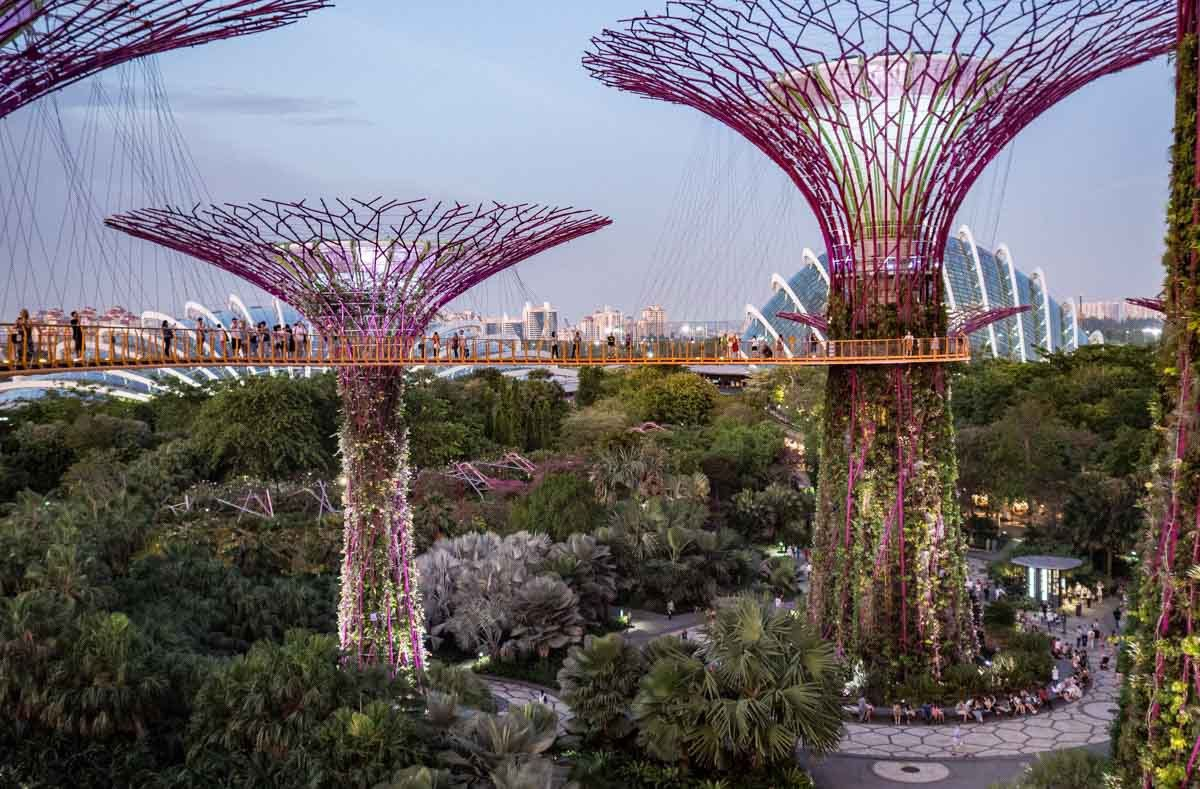A 3-Day Singapore Itinerary for Art and Nature Lovers | Singapore