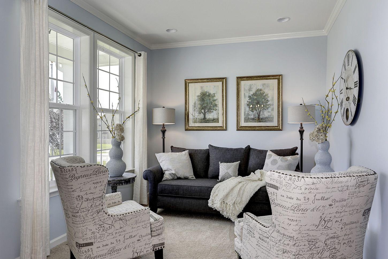 Morning Room Paris Chairs Gray Sofa Blue Walls White