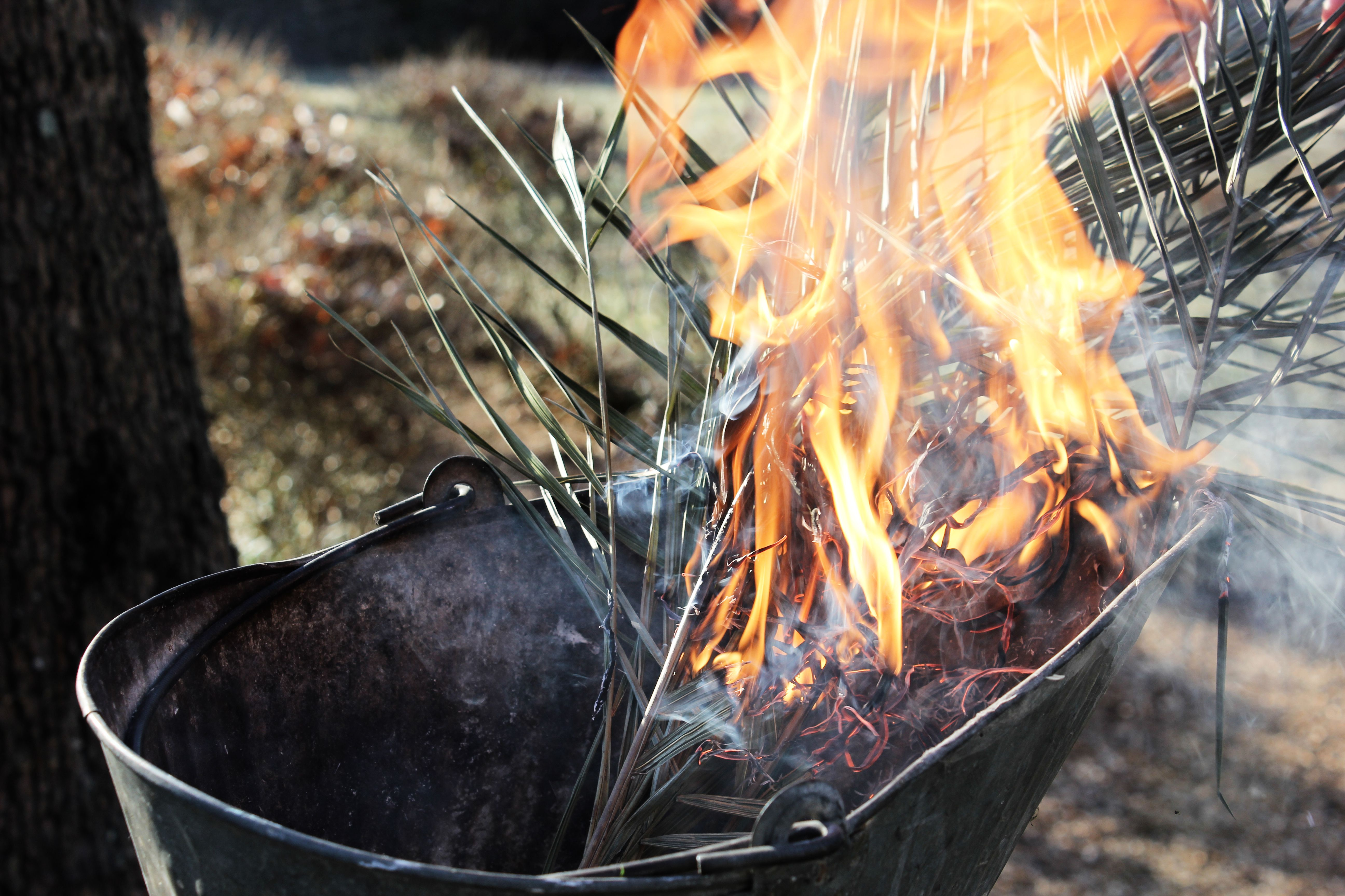Dried palms being burned for ash wednesday ashes lent pinterest dried palms being burned for ash wednesday ashes buycottarizona Image collections