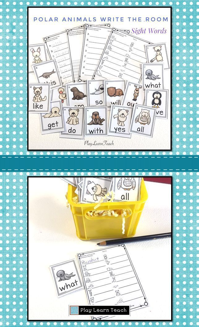 Polar Animals Write the Room Sight Words Kindergarten
