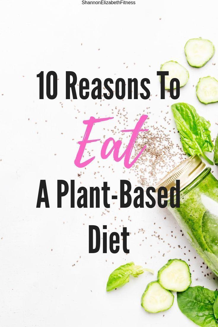 #eine #Ernährung #für #Grunde #Pflanzliche #vegan healthy recipes blog 10 Reasons To Eat A Plant-Based Diet        Haben Sie darüber nachgedacht, eine pflanzliche Diät zu versuchen, sind sich aber nicht sicher, worum es wirklich geht? Erfahren Sie mehr über eine pflanzliche Ernährung und ihre Vorteile! #Vegane Diät #vegane Rezepte #Vegetarier #vegan #plantbasedrecipesforbeginners