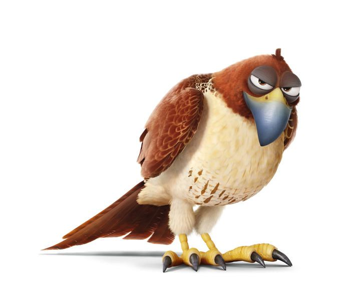 Tiberius The Red Hawk Is A Friend Of The Pets In The Secret Life Of Pets Pets Movie Secret Life Of Pets The Secret Of Pets
