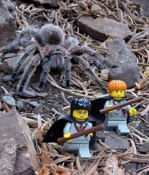 Chamber Of Secrets Lego Harry Ron Der Kleine Hobbit Spinne Hobbit