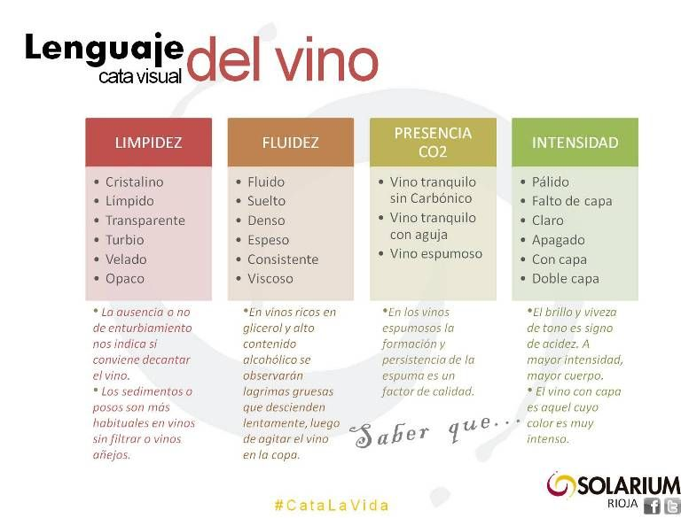 Infografia Lenguaje Cata Visual Del Vino Solariumrioja Vinos Y Quesos Vinos Vino Espumoso