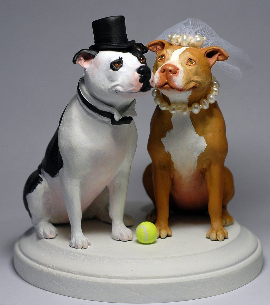 """Pit Bull Cake Topper   By: Rachel Young  http://www.blackrabbitsculpture.com/  Commission. 5"""" tall. Super sculpey, apoxie clay, wire mesh, acrylic paint, netting, seed beads and freshwater pearls."""