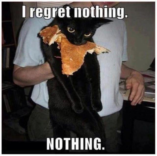Revenge of the kitty!