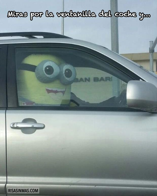 Miras por la ventanilla del coche y…