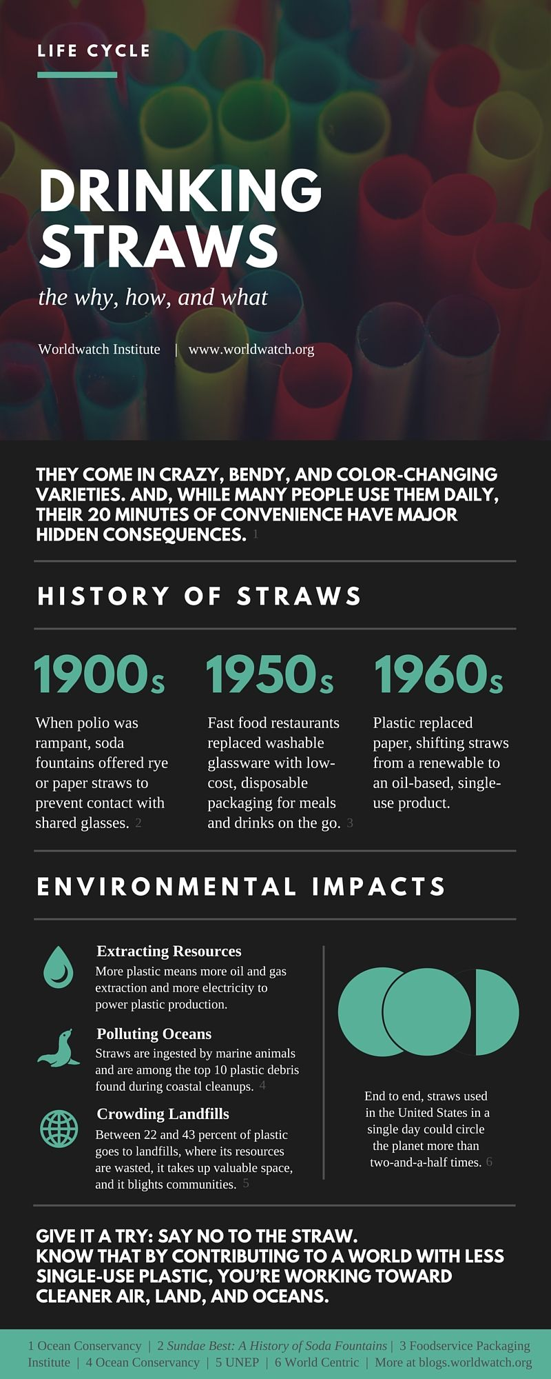 Straws Life Cycle Infographic Learn Infographics