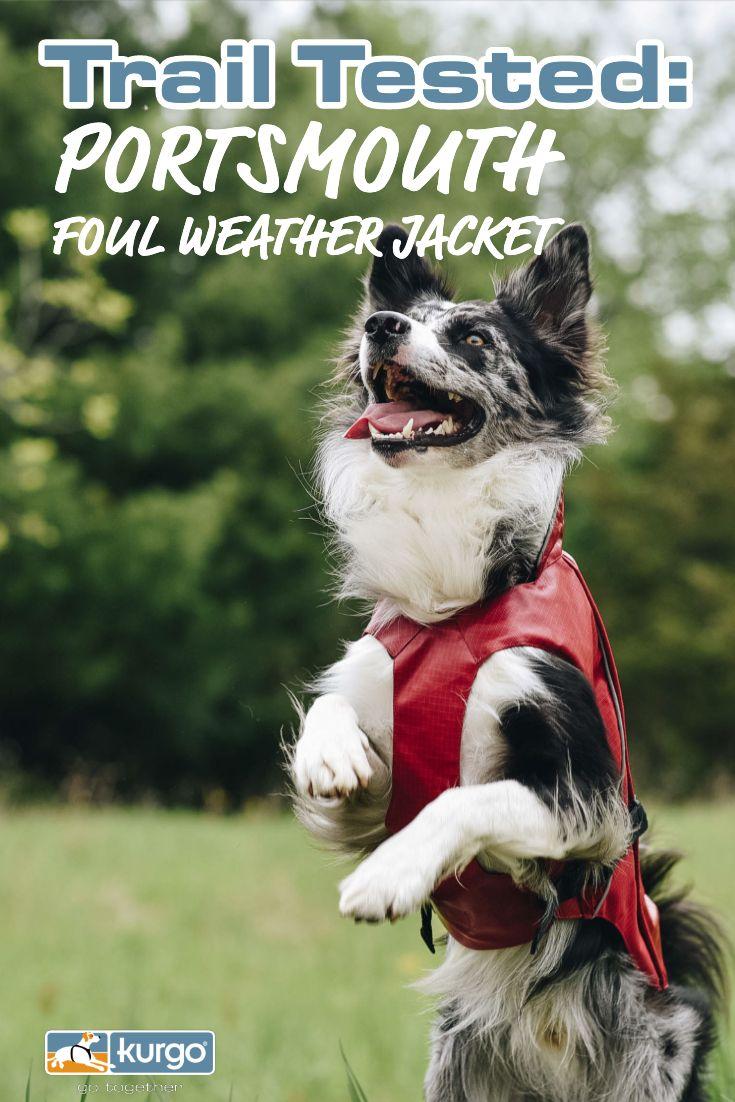 Trail Tested Portsmouth Foul Weather Jacket Hiking Dogs Dog