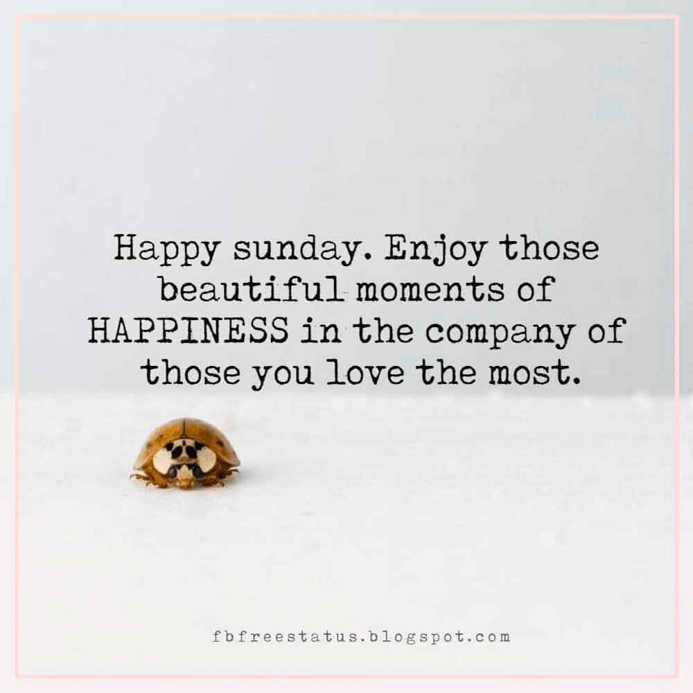 Funny Happy Sunday Quotes To Be Happy On Sunday Morning Sunday Morning Quotes Happy Sunday Quotes Sunday Quotes