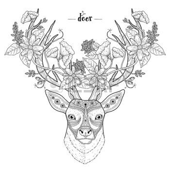 abstract flowers: elegant deer head coloring page in exquisite style ...