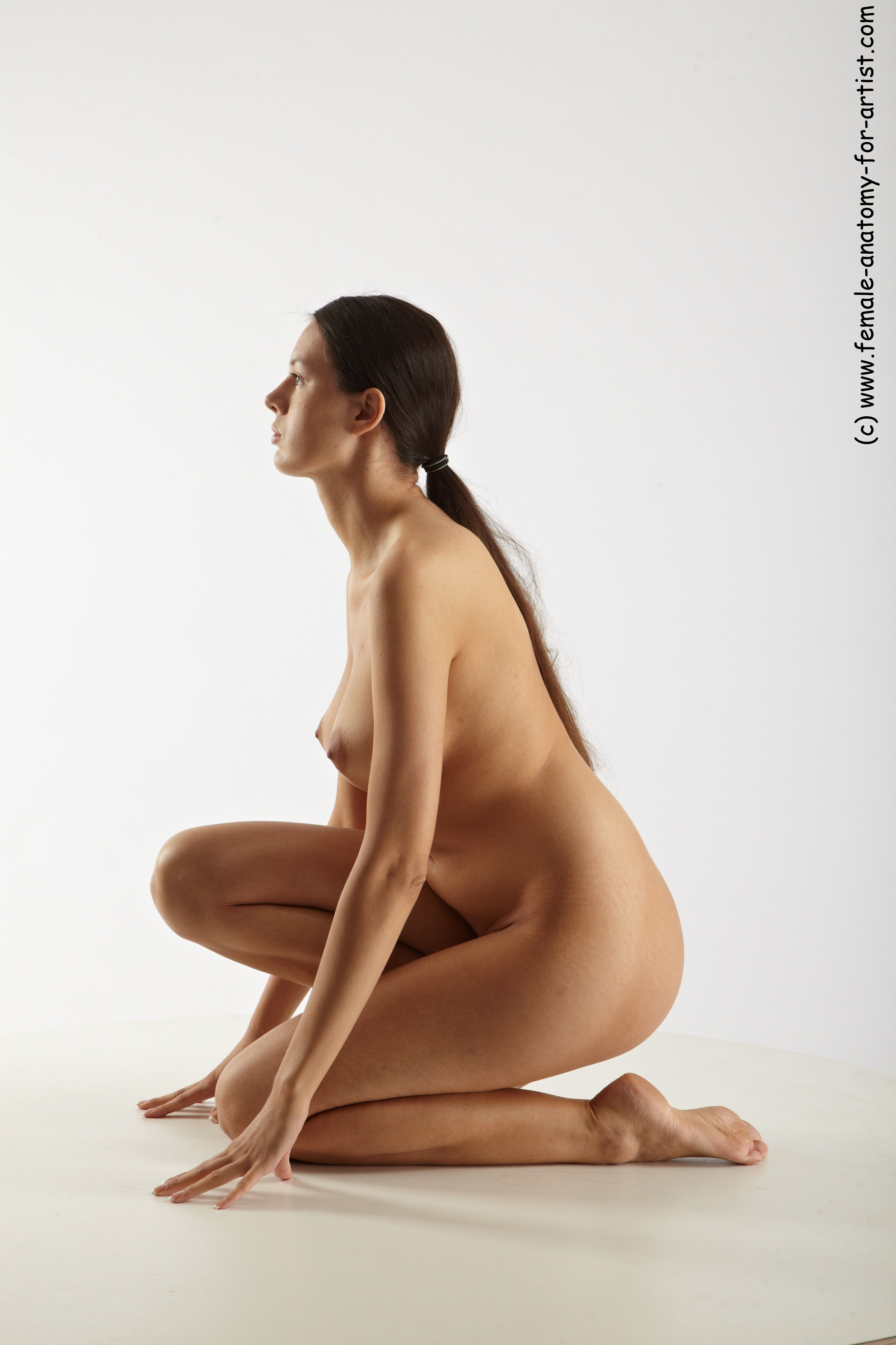 PHOTO REFERENCE OF NUDE WOMAN - FEMALE ANATOMY FOR ARTIST ...