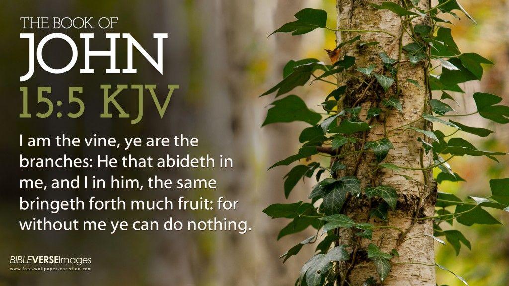 John 15:5 KJV - Bibe Verse Wallpaper | Free Wallpaper Christian ...
