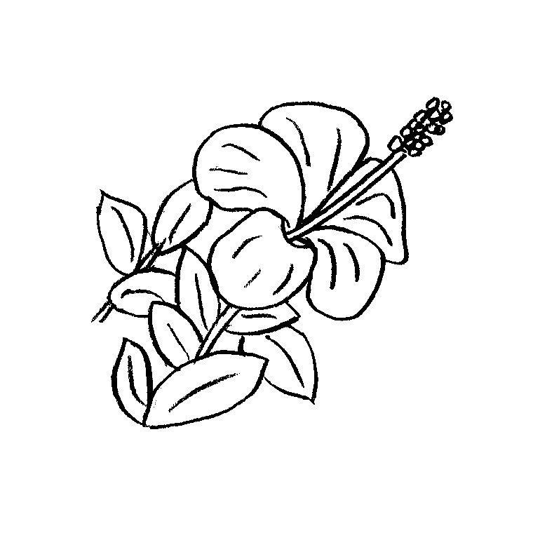 Dessin de fleur 135 , Cliquez pour imprimer