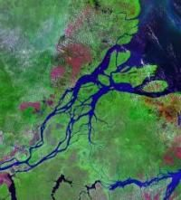 Is The Amazon River The Longest River Or Maybe It S The Nile