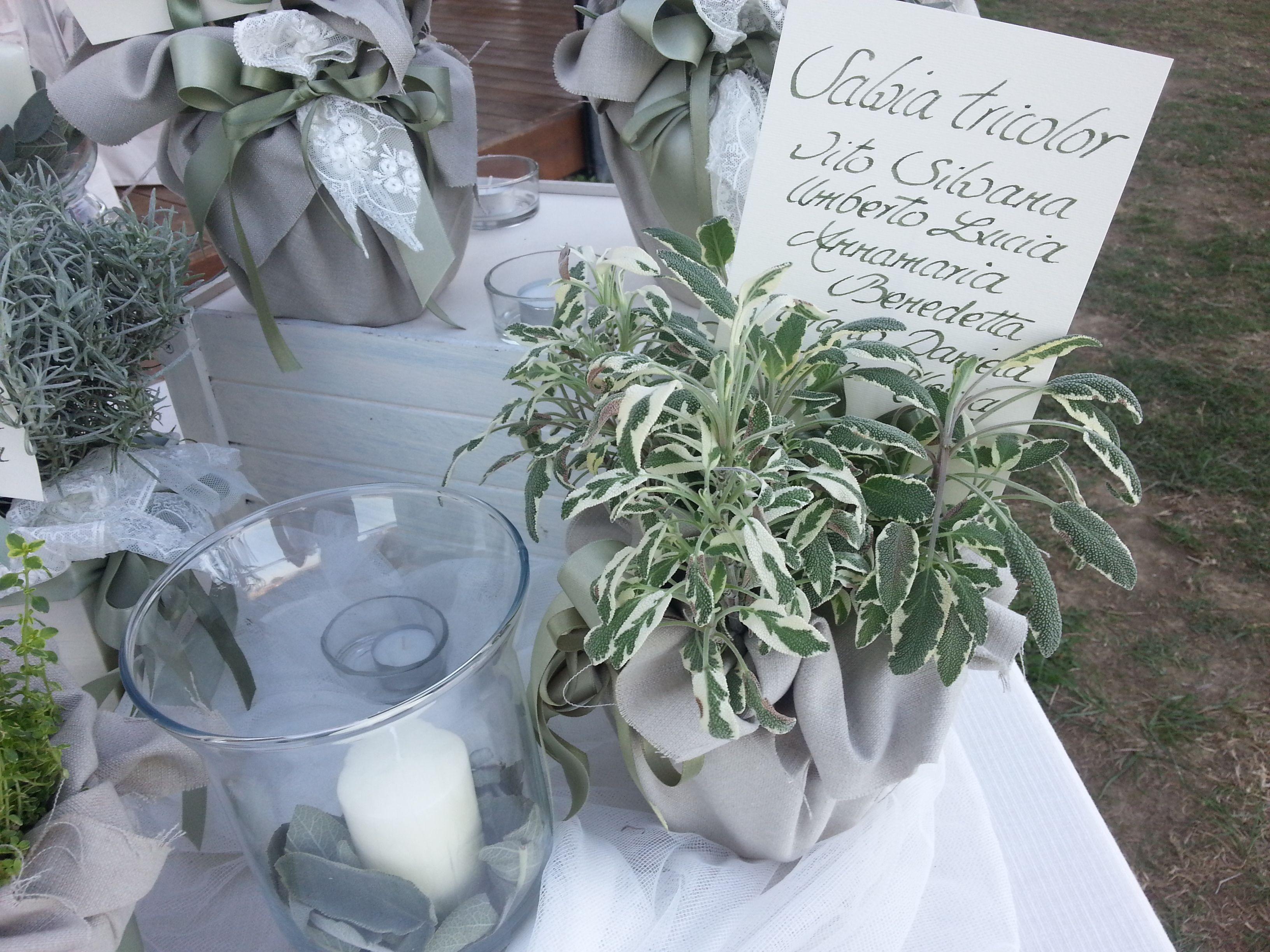 Tableau Matrimonio Tema Erbe Aromatiche : White green per tableau de mariage erbe aromatiche