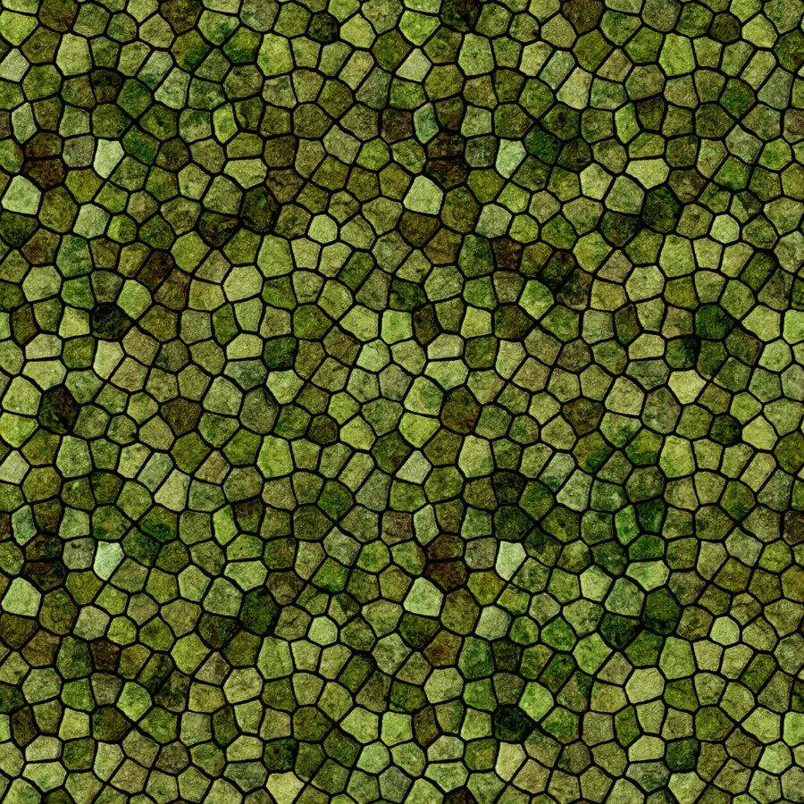 Reptile Skin World Of Textures Reptile Skin Leather
