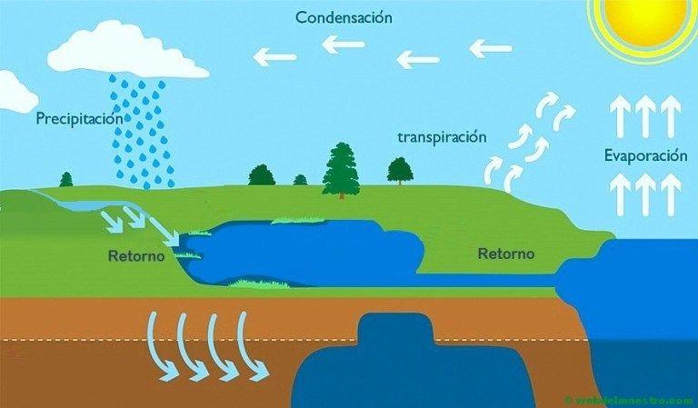 El Ciclo Del Agua Primaria Web Del Maestro Ciclo Del Agua Estados Fisicos Del Agua Web Del Maestro