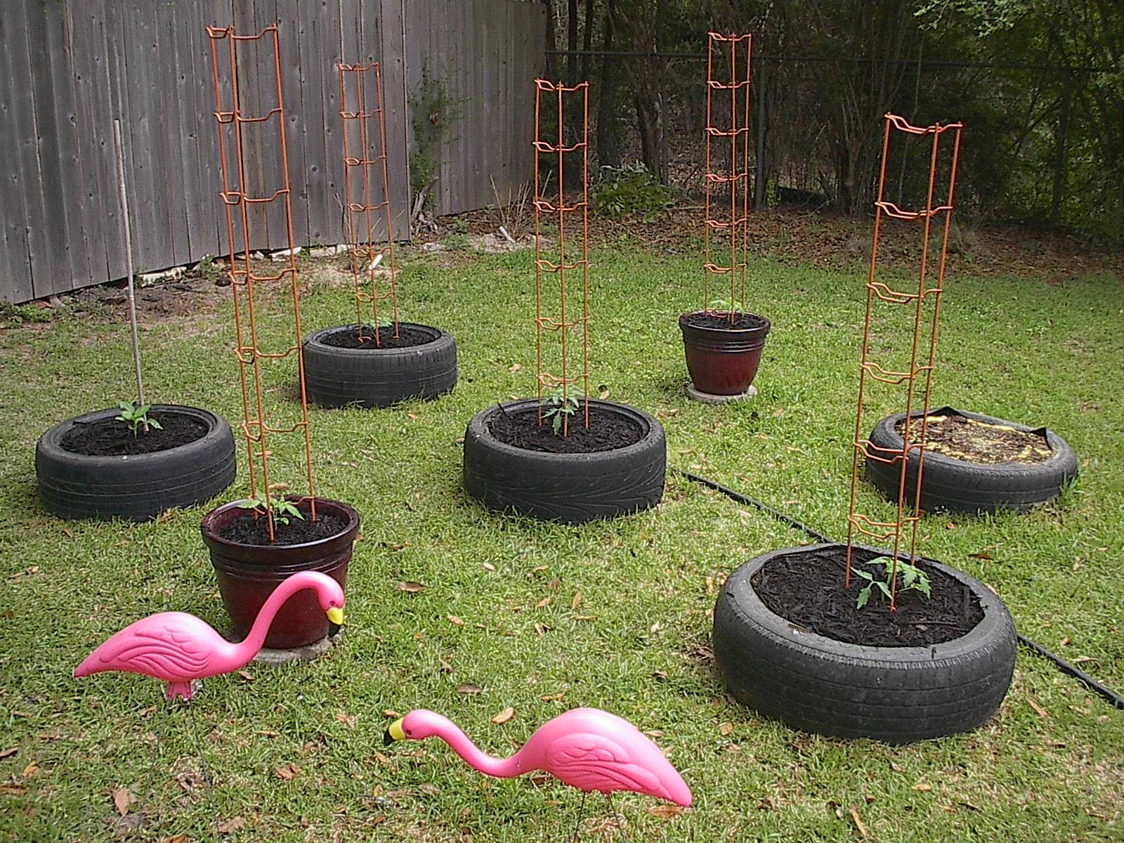 How To Diy Old Tire Garden Ideas Recycled Backyard Tire Garden Diy Garden Diy Garden Decor