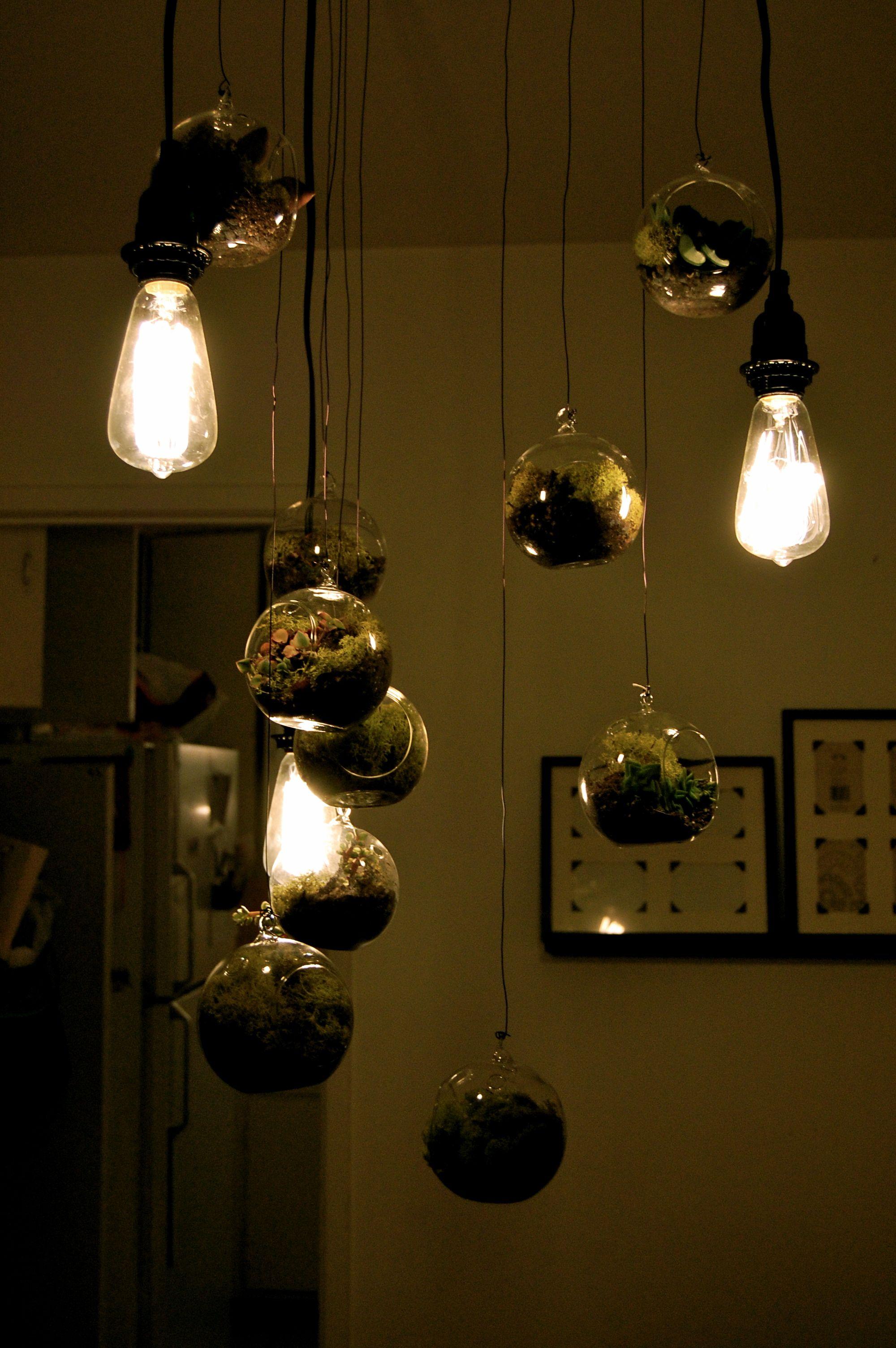 Hanging terrarium chandelier i love pinterest hanging hanging terrarium chandelier mozeypictures Image collections