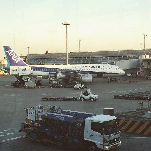 だいぶ陽が長くなった。この時間の空港✈️もなかなかいい。